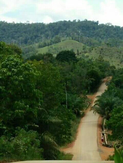 Jalan Utama dalam desa Kinipan yang sudah beraspal